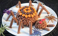 Thumb_mi_1_chocolate-spider_irish_american_mom