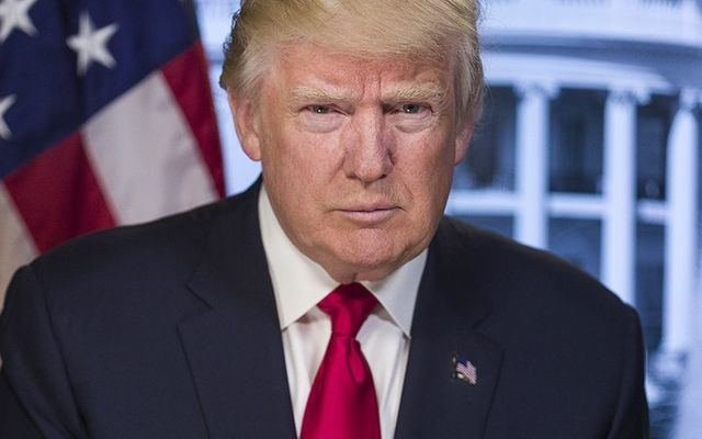 The official portrait of President Donald Trump.