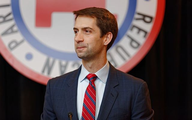 Senator Tom Cotton of Arkansas has emerged as an opponent to the E3 visa bill.