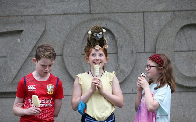 Pictured (LtoR) Evin Curley (11), Anna Reidy (11) and Triona Curley (8) from Co Galway enjoy and ice lollies whilst Anna balances her new Monkey on her head outside Dublin Zoo.