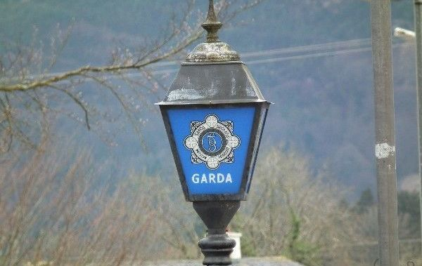 Gardai have launched an investigation into the discovery of skeletal remains in Co Wexford