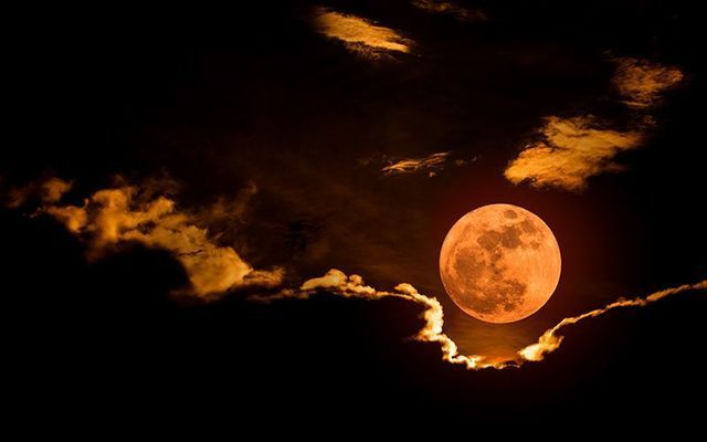 """A \""""Super Blood Wolf Moon\"""" will be visible in Ireland before sunrise on Monday."""