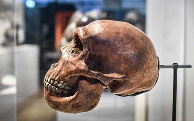 A skull displayed as part of the Neanderthal exhibition at the Musee de l\'Homme in Paris in 2018.