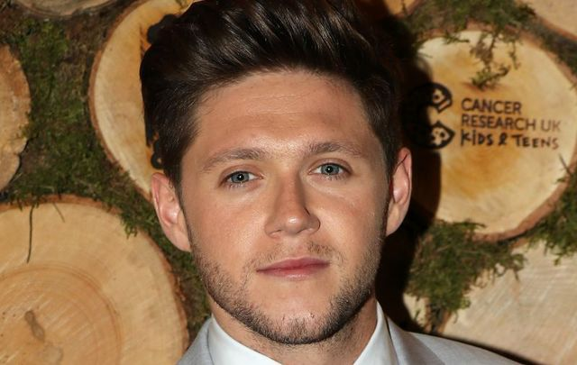 Niall Horan wants people to be nicer to each other