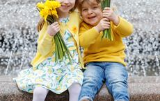 Thumb_irish_cancer_society_daffodil_day_facebook