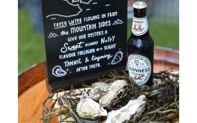 Guinness Extra Stout and oysters.