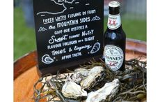 Oyster Day! The surprising reason Guinness tastes so good with oysters