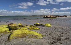 Thumb_mi_cloghcor__arranmore_island__county_donegal_getty__2_