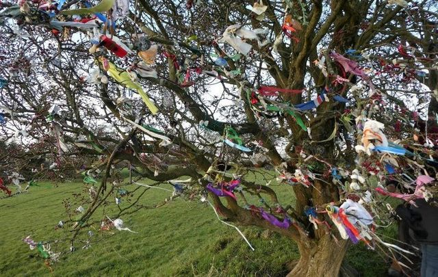 The Tara Skryne Preservation Group is urging visitors to not add their own tokens to the so-called Wishing Trees at the Hill of Tara.