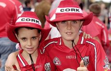 Only one man tried among Cork hurlers in Kilkenny defeat