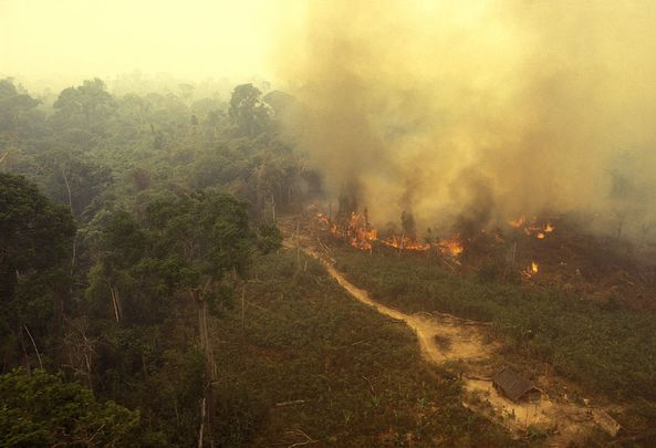 Fires continue to rage in the Amazon, in Brazil.