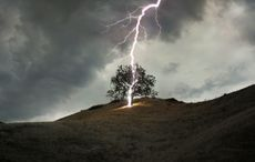 Thumb_lightning_strike_tree_getty__1_