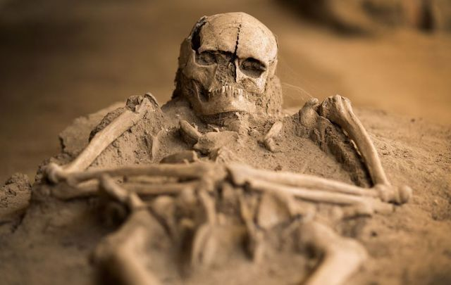 A 3,000-year-old skeleton was found at what is considered to be the birthplace of Halloween in Ireland.
