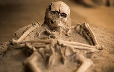 Thumb_skeleton_2___getty