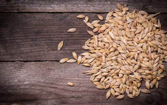 Barley was a staple for Iron Age Irish.