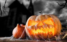 Thumb halloween pumpkin spooky house istock