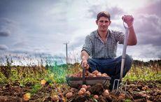 Ten reasons you should marry an Irish farmer