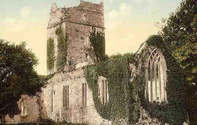 Muckross Abbey, Killarney, Co. Kerry.