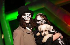How Féile Na Marbh or 'Feast of the Dead' became Halloween