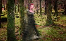 Thumb_cropped_ghost_woods_ireland_halloween_ireland_istock