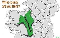 Thumb mi roscommon ireland counties