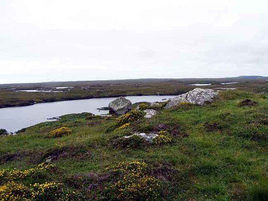 The bog where the manuscript was found.