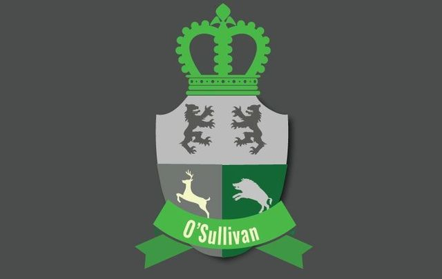 Here are some interesting facts about the Irish last name O\'Sullivan, including its history, family crest, coat of arms, and famous clan members.