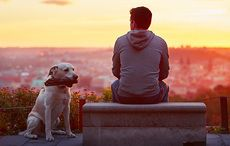 Thumb_man_dog_sunset_istock