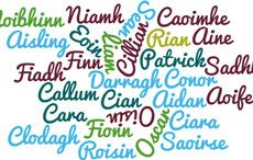 Choose From The Top 100 Irish Names
