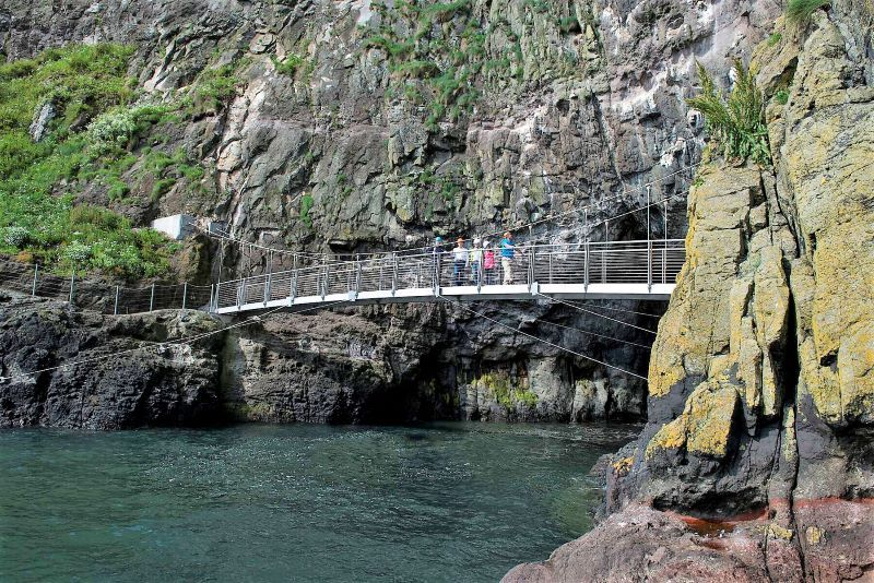 The Gobbins Cliff Path. (Ireland's Content Pool)