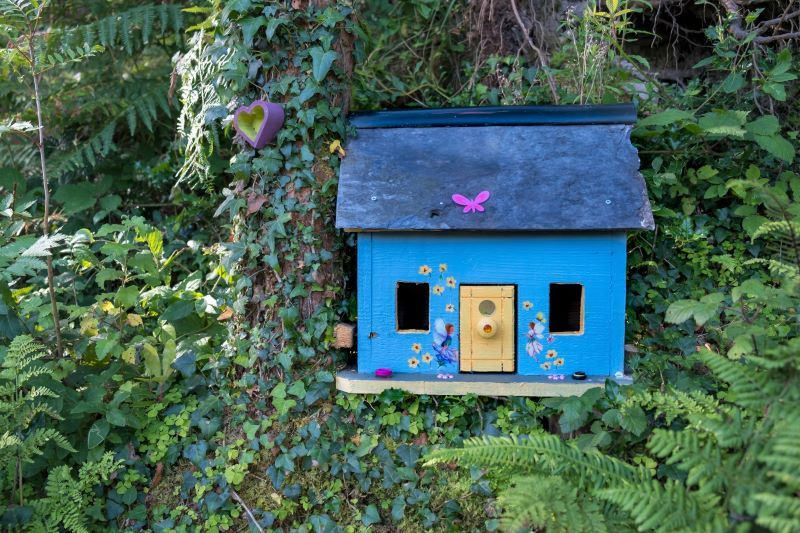 My mission to chronicle the Faerie of Ireland | IrishCentral com