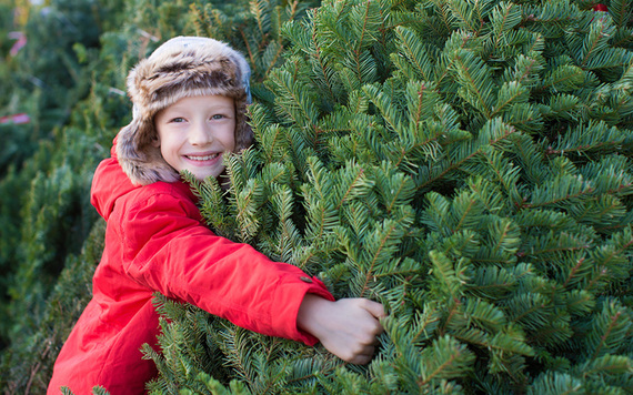 Choosing a tree in the past has been a family affair.