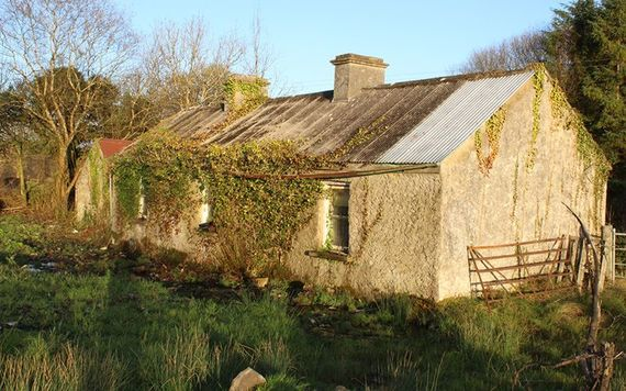 Derelict Cottage For Sale In Carrick On Shannon Image REA Brady