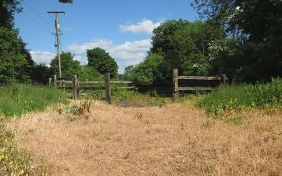Out the land! 2.5 acres of paddocks.