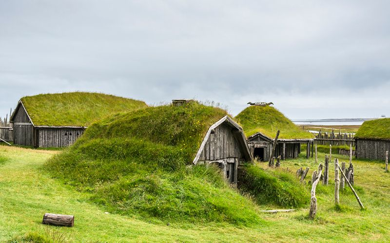 How to find out if you have Irish Viking ancestry
